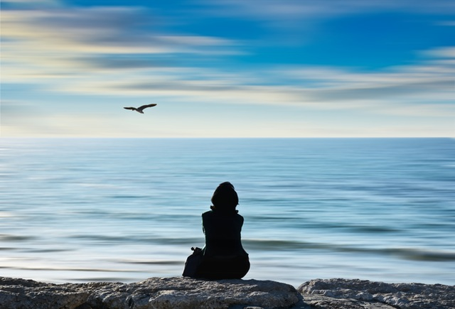 Persona guarda un uccello in volo sul mare